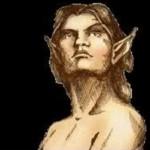 Lesní Elfové - Popis